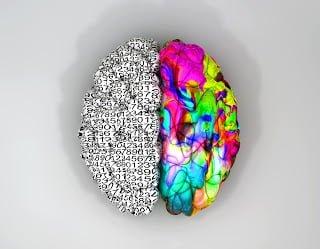 pensamento holístico