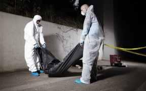 pentagon orders body bags