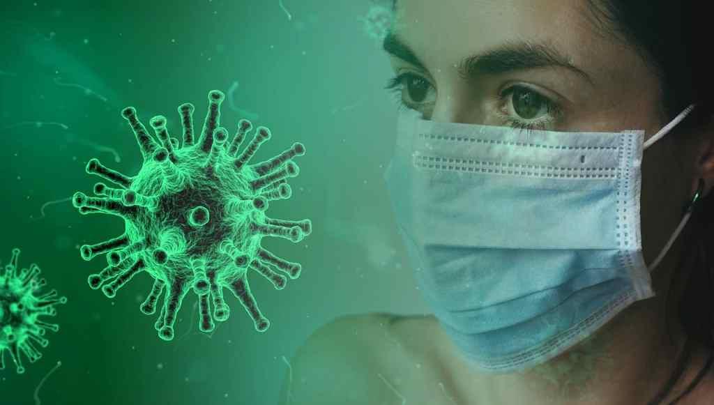 flu vanished covid-19