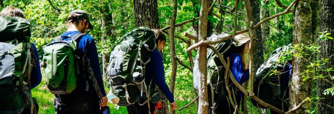 Hikers going outdoors to learn bushcrafting skills