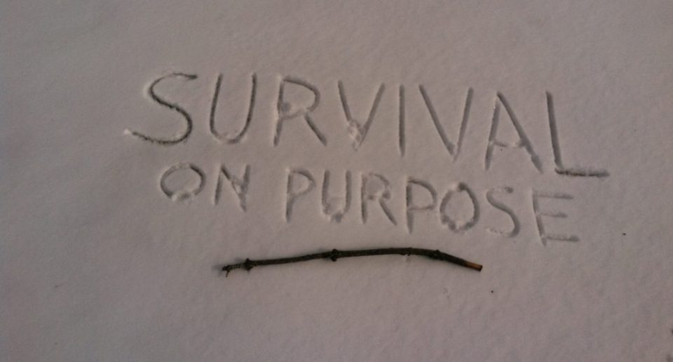 Survival On Purpose, survival show
