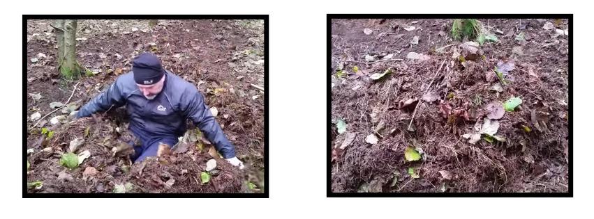 leaf mound survival shelter