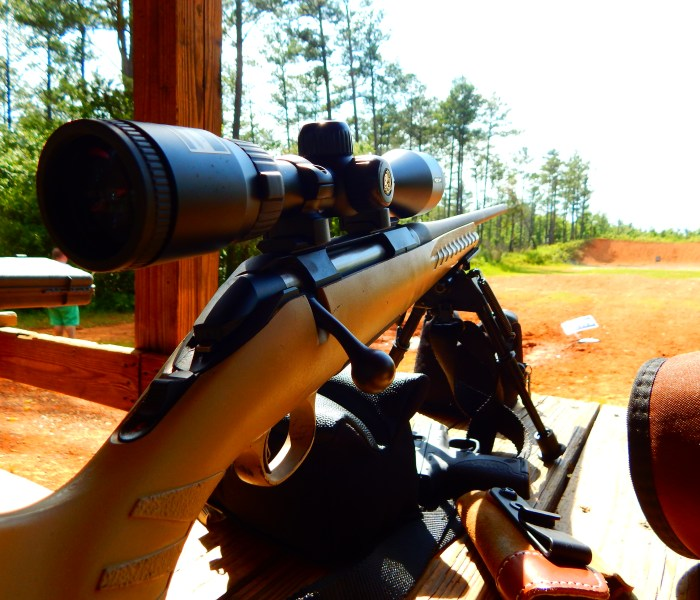 Budget Precision: The Hunt for a Rifle