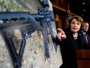 Senate Democrats and their surrogates are currently pushing 21 new gun controls for law-abiding citizens