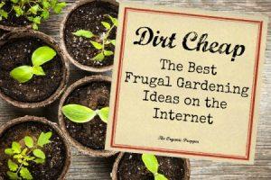Dirt Cheap: The Best Frugal Gardening Ideas on the Internet