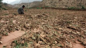 China Faces Food Shortage As Droughts, Flooding, And Pests Ruin Harvest
