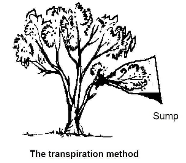 transpiration method water procurement
