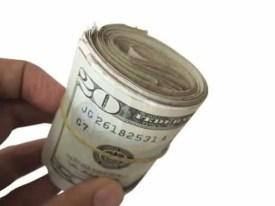 Prepper's Will - Generate income off-grid