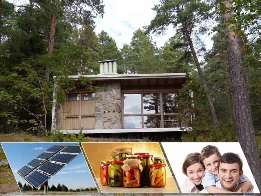 Prepper's Will - How to Live off-grid