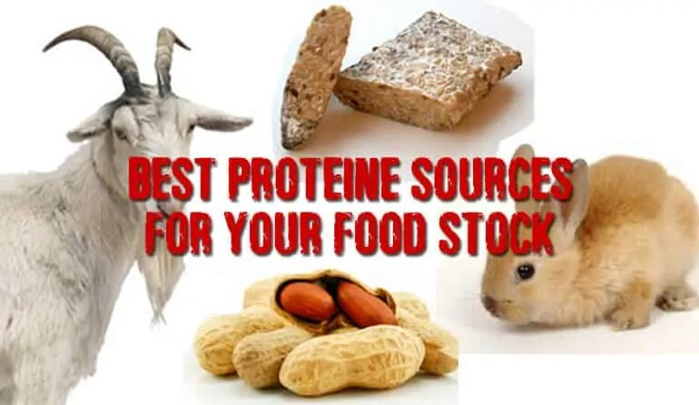 Prepper's Will - Protein sources for your pantry