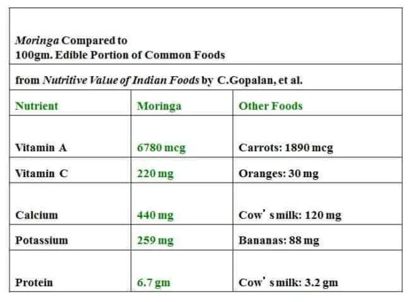Prepper's Will - Moringa Oleifera Nutritional Value