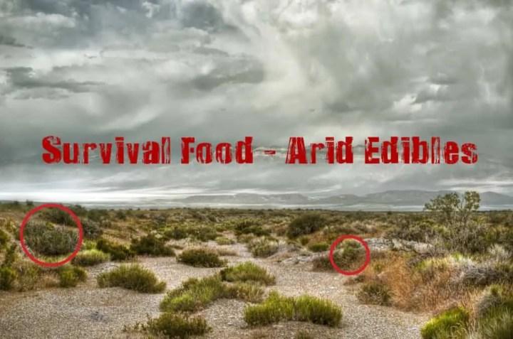 Prepper's Will - Survival Food Arid Edibles