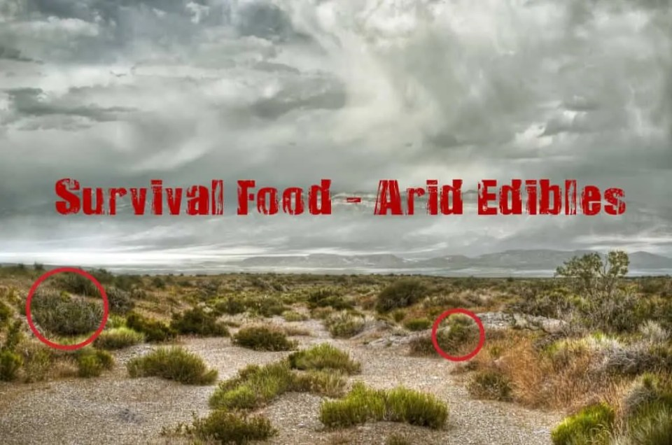 Prepper's Will - Survival Food Arid Edibles