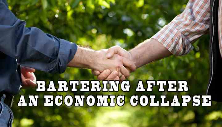 Prepper's Will - Bartering after an economic collapse