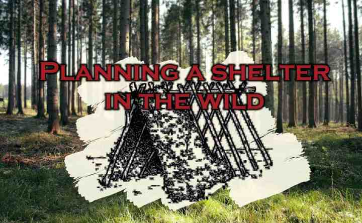 Planning a shelter in the wild