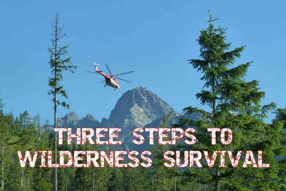 Three steps to wilderness survival to learn