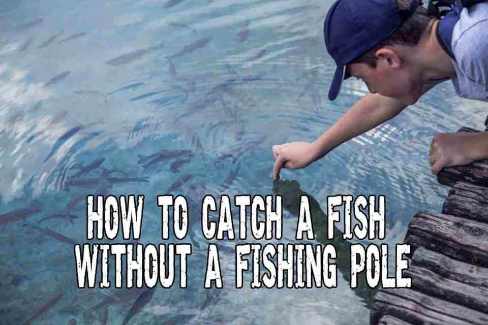 How To Catch A Fish Without A Fishing Pole