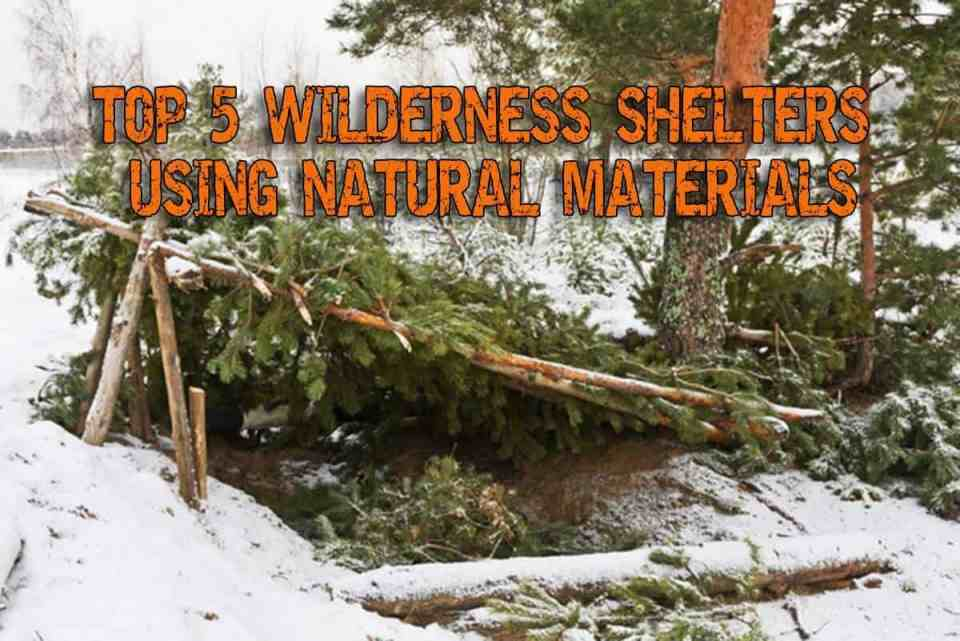Top 5 Wilderness Shelters Using Natural Materials