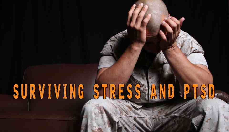 Surviving Stress and PTSD