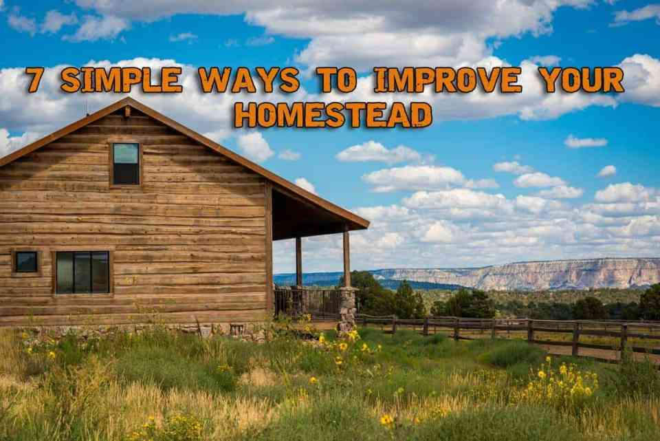 7 Simple Ways To Improve Your Homestead in 2019