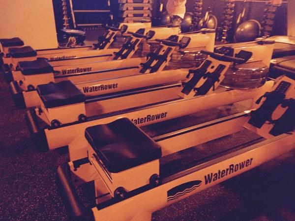 Orangetheory Rowers