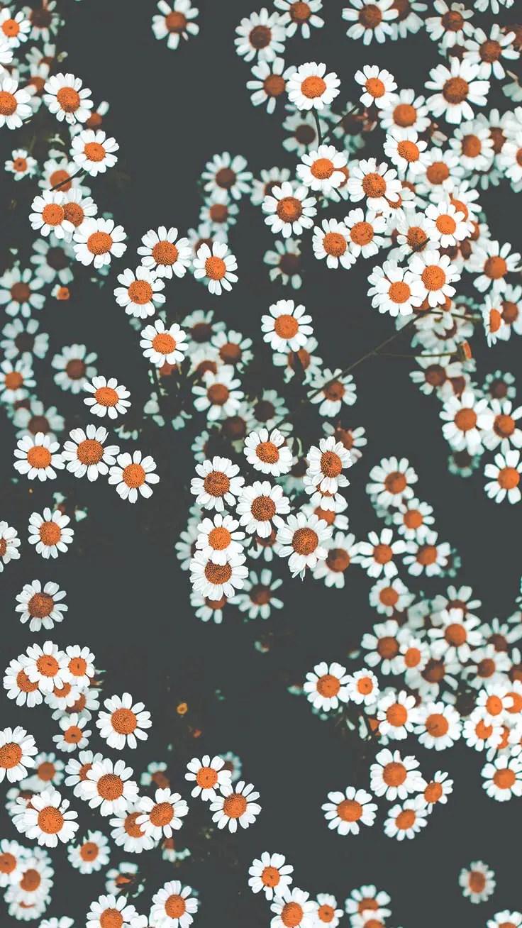 Aesthetic Wallpaper For Iphone Xr