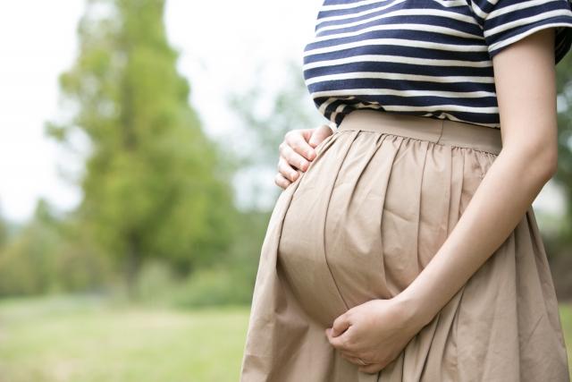 妊娠中に乗れないアトラクションまとめ