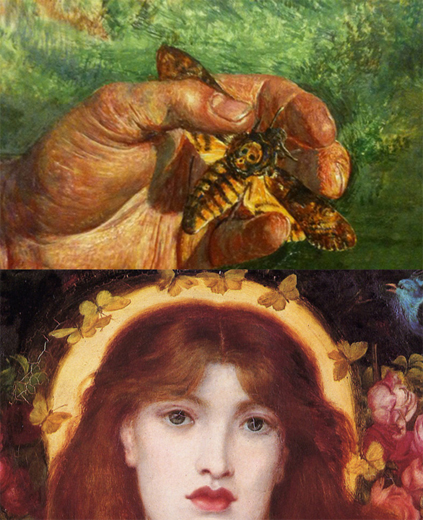 The Symbolism Of Lepidoptera • Pre Raphaelite Sisterhood