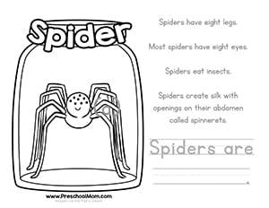 Bug Coloring Worksheets for Preschool