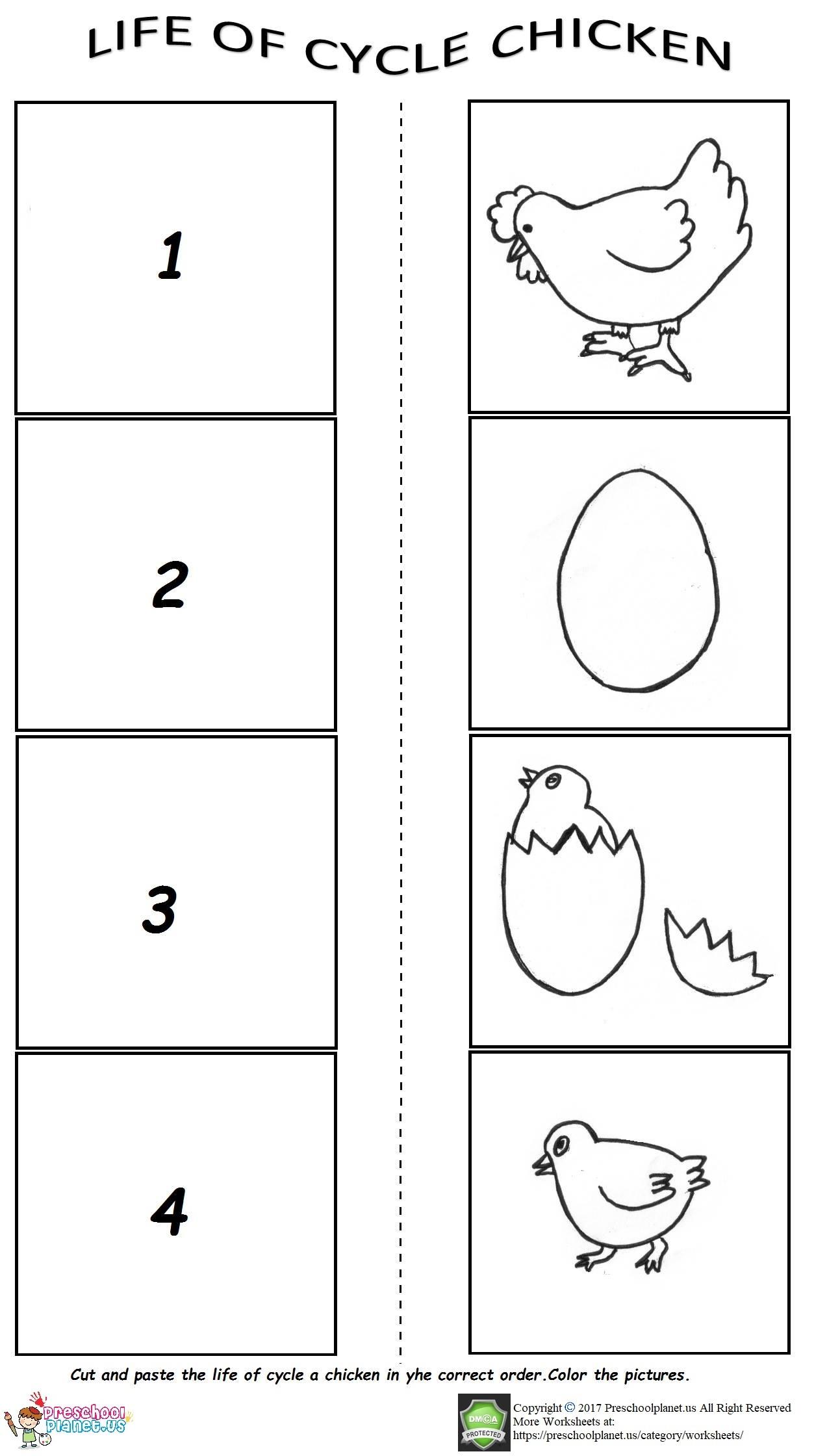 Visual Perception Worksheet For Kids Preschoolplanet