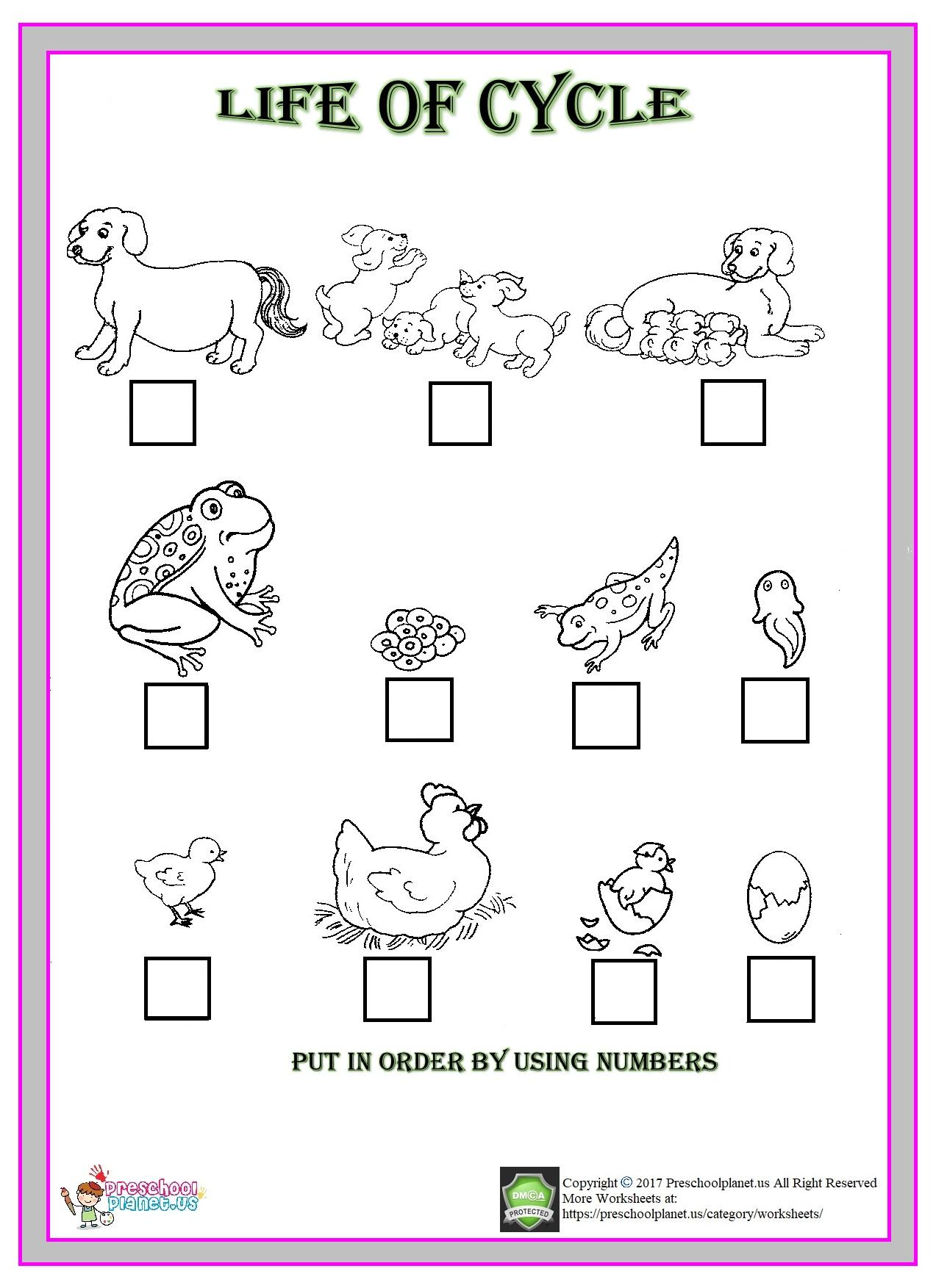 Same And Different Worksheet Preschoolplanet