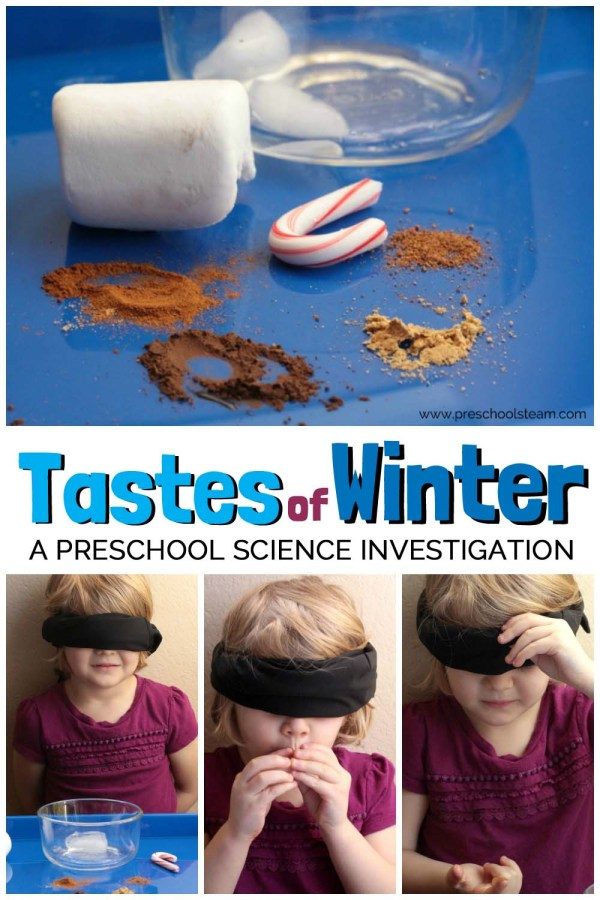 Tastes Of Winter Preschool Science Activity