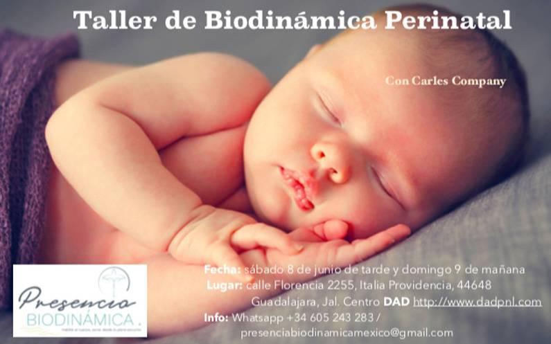 "8 de Junio. ""Taller de biodinámica perinatal"" Guadalajara Jalisco."