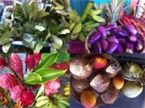 040413 mercado agricola