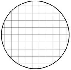 Grid Fill Shape