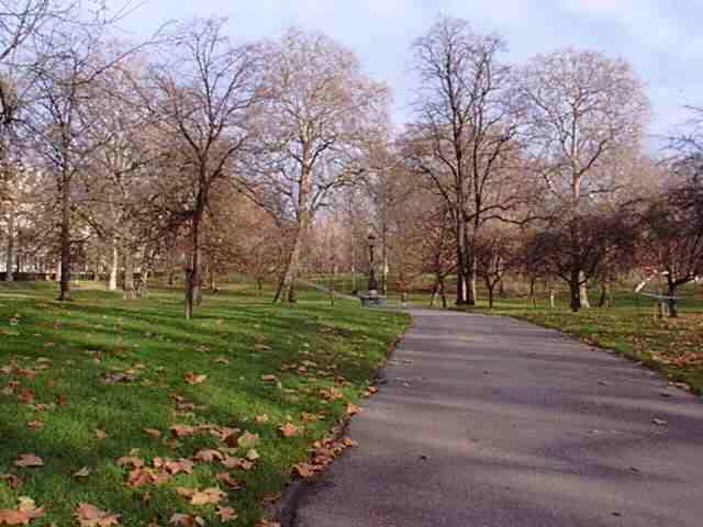 Green Park - Outono em Londres - Inglaterra