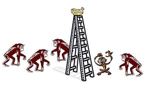 A Experiência dos Macacos. (1/6)
