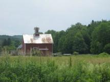 Metal Horse Barns Joy Studio Design