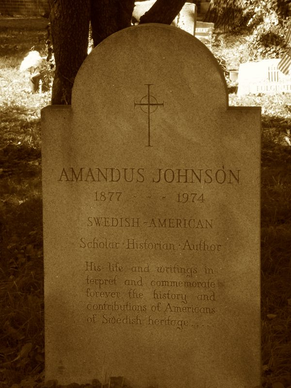 Read more about the article Amandus Johnson, Swedish-American Scholar