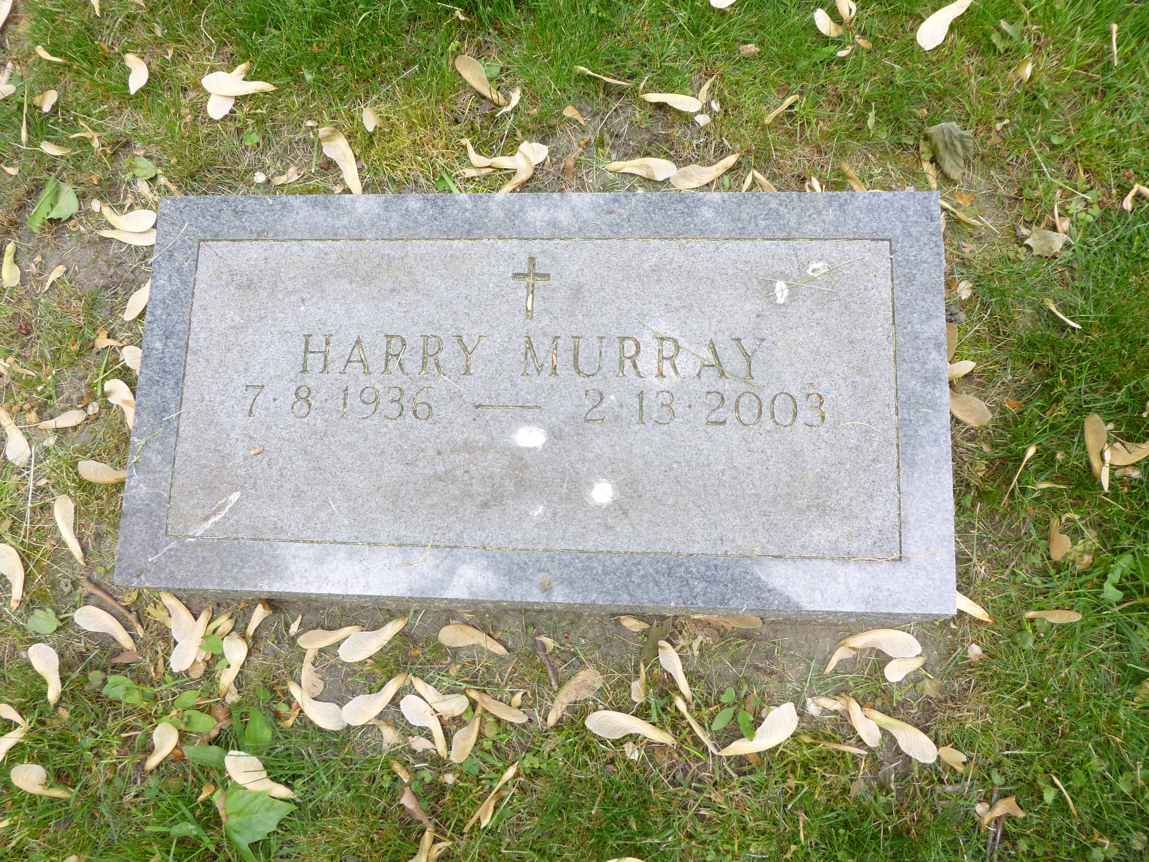 Read more about the article Harry Murray