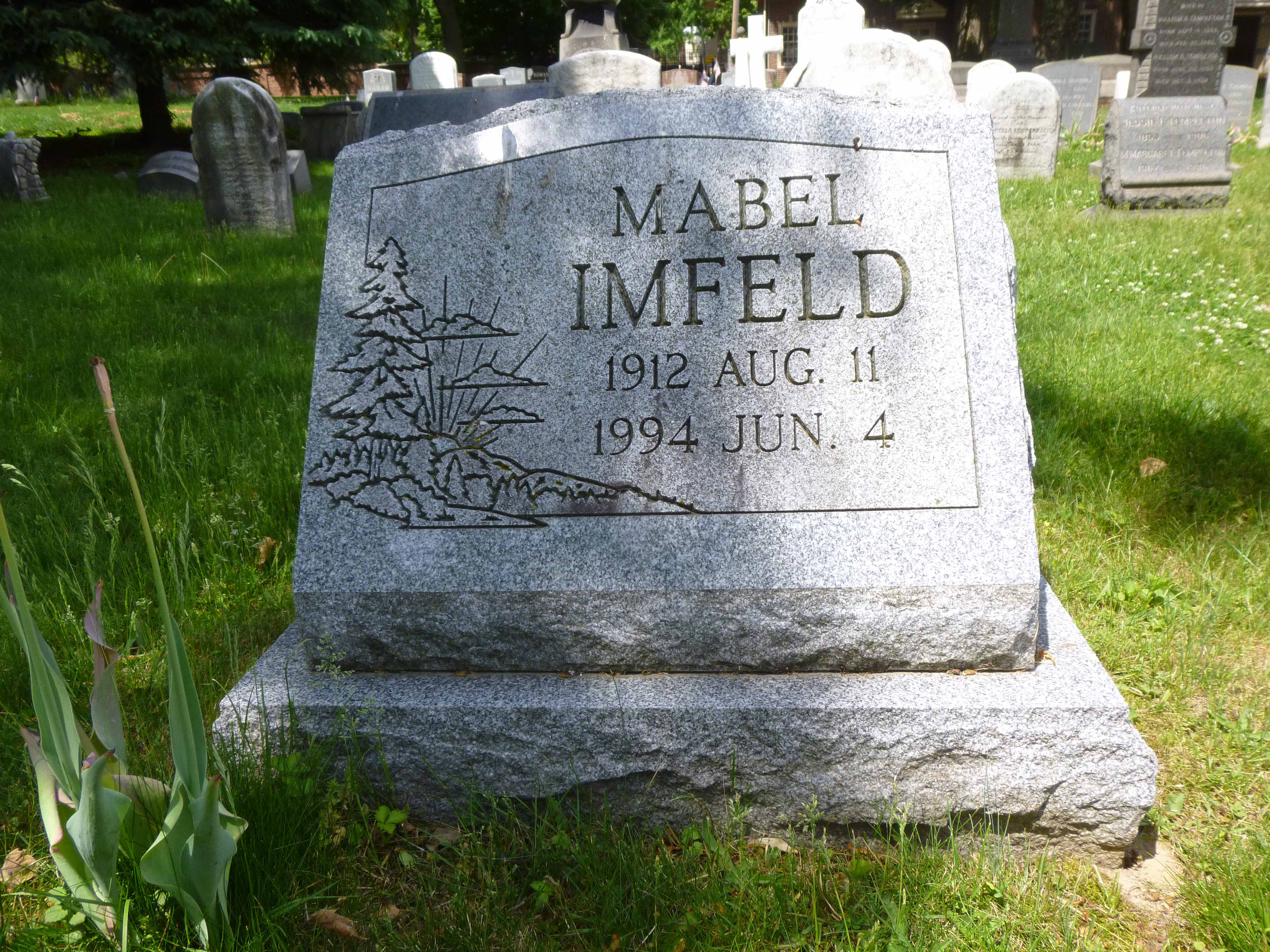 Read more about the article Mabel Imfeld