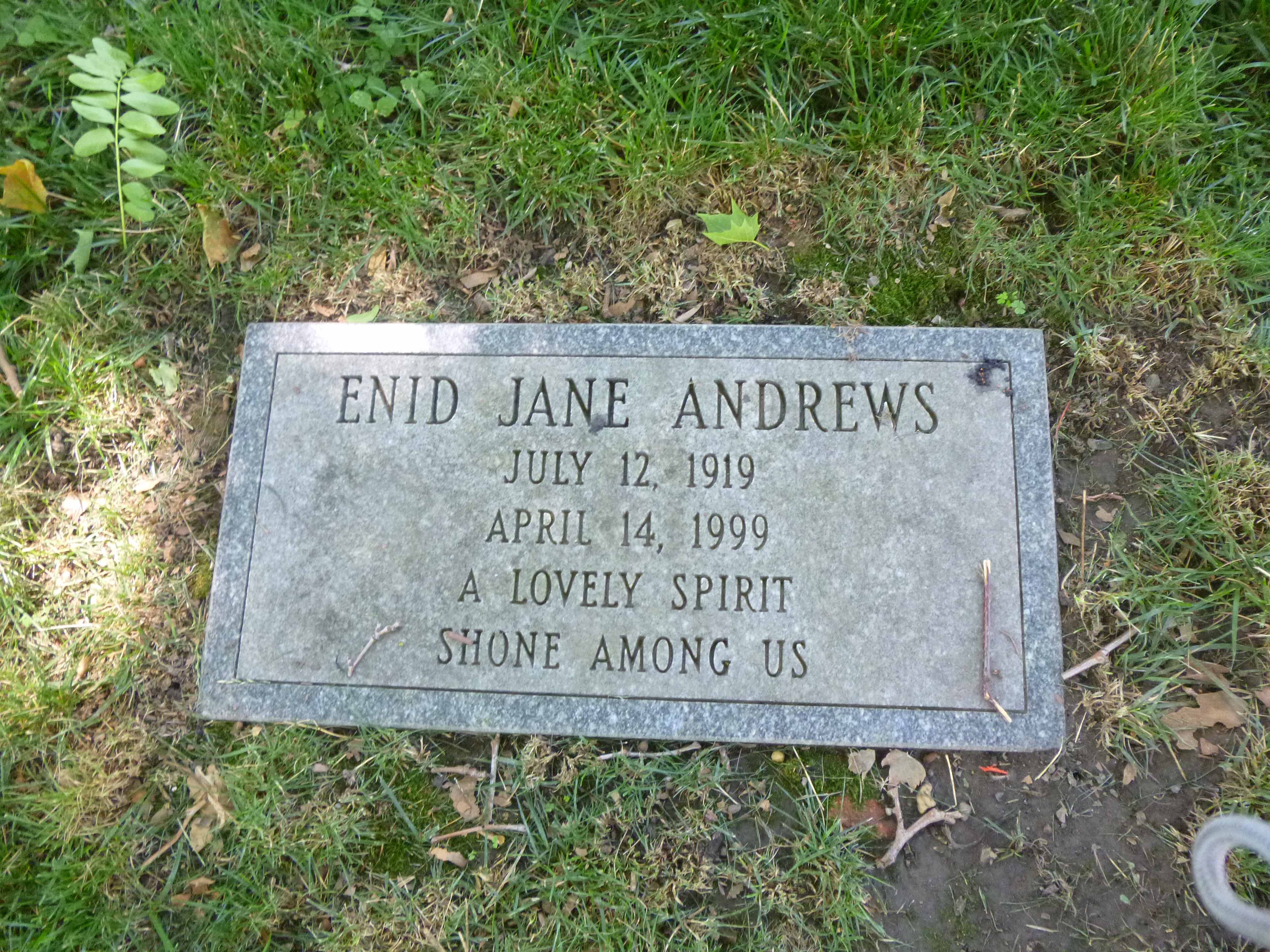 Read more about the article Enid Jane Andrews