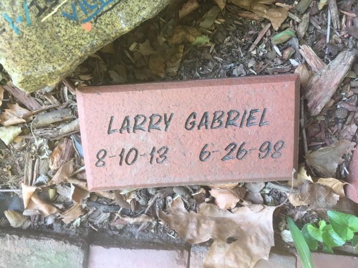 Larry Gabriel