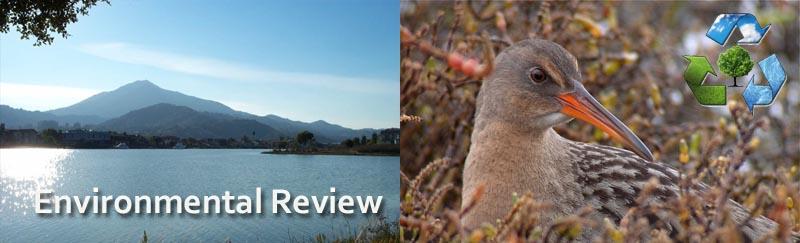 MC Lights Environmental review