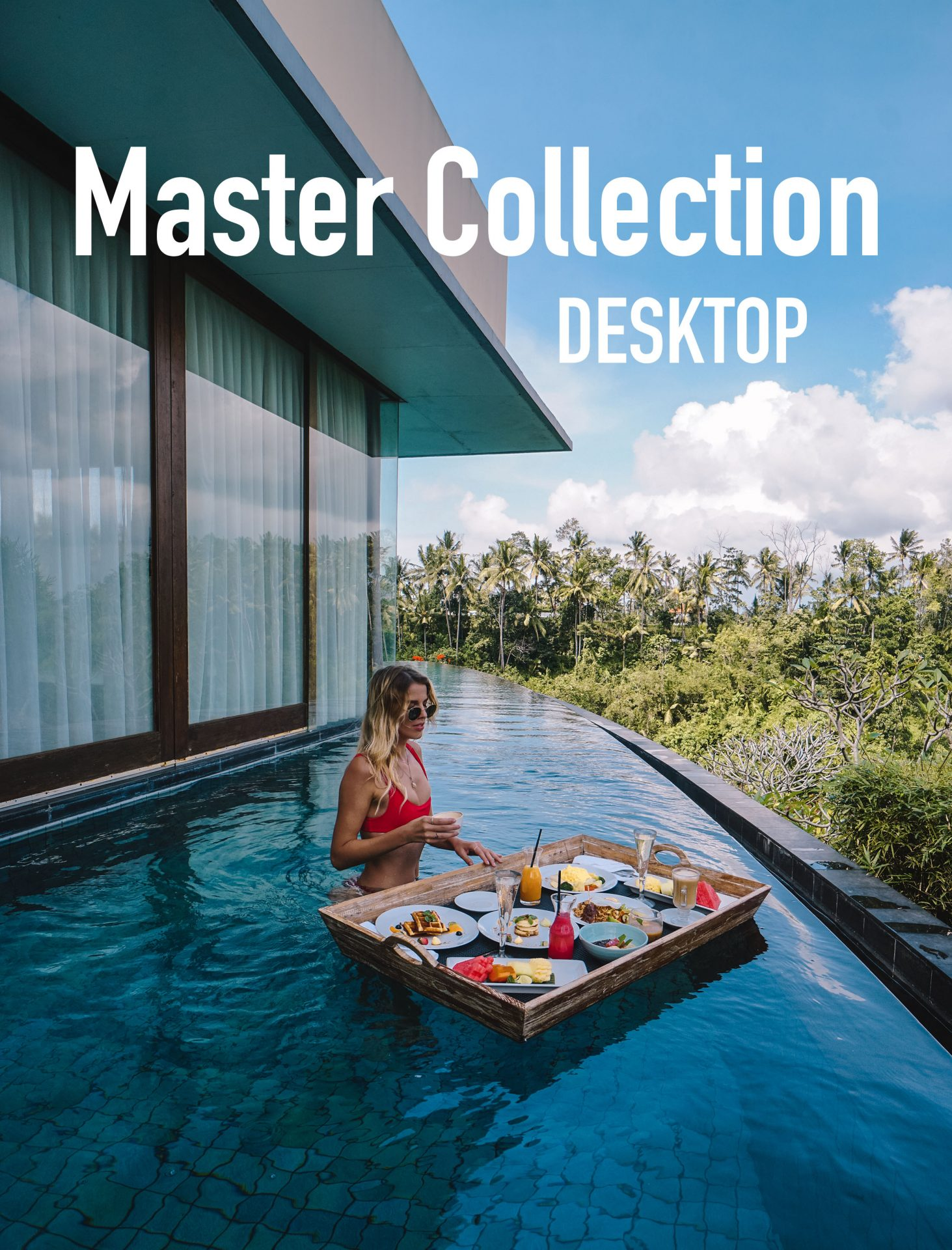 Master Collection Desktop - Meryl Denis Presets