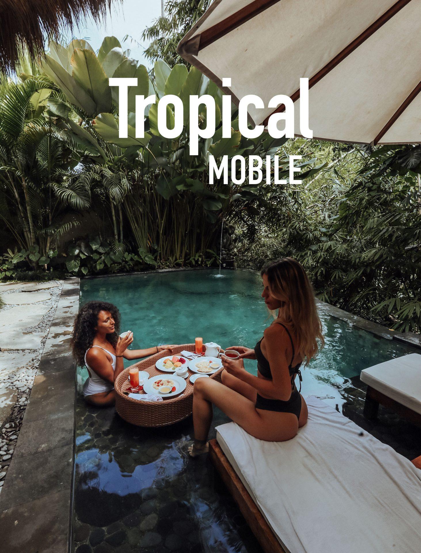 Tropical Mobile - Meryl Denis Presets