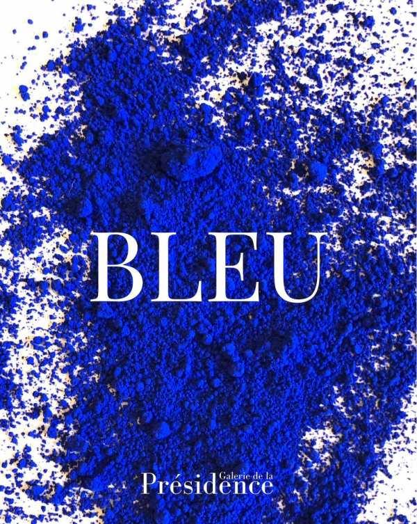Exposition BLEU, à l'occasion des 50 ans de la galerie de la Présidence
