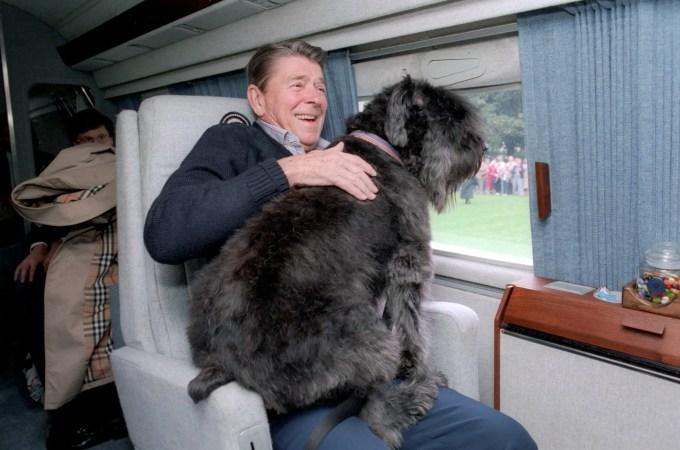 Ronald Reagan's Dog Lucky