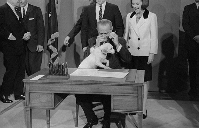President Johnson Tries to sign a piece of legislation on Dec. 15, 1967, but Yuki jumped up onto the desk.