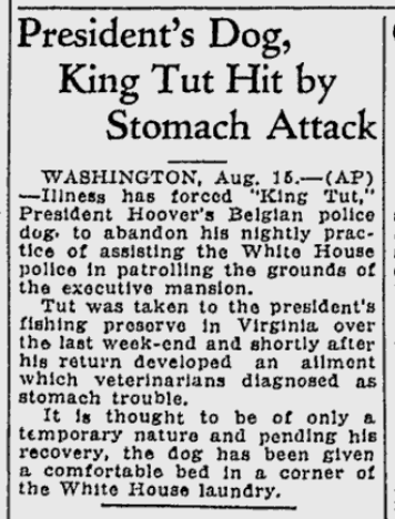 Aug. 16, 1929, article about the declining health of King Tut.